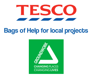Partner logo Tesco bags of Help